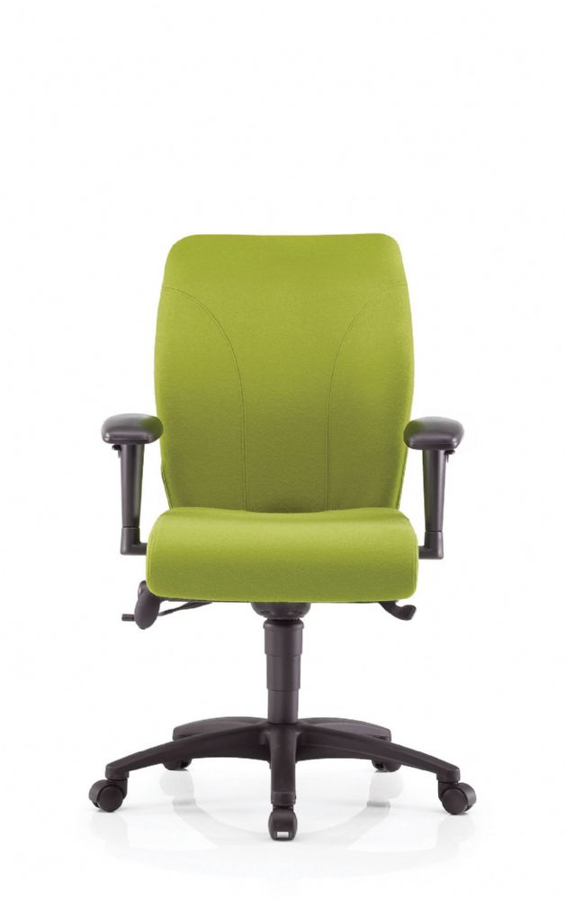 Pledge Ethos Posture Chair With Medium Back
